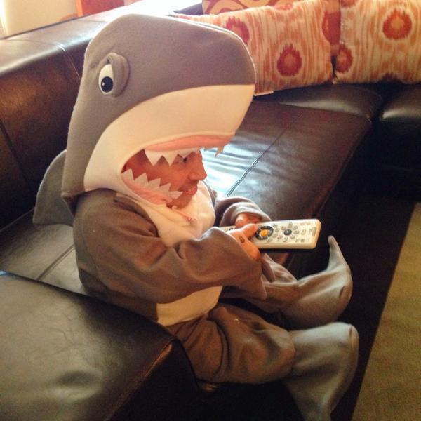 Got a little too excited about #sharkweek last night http://t.co/kT97WTOsdS