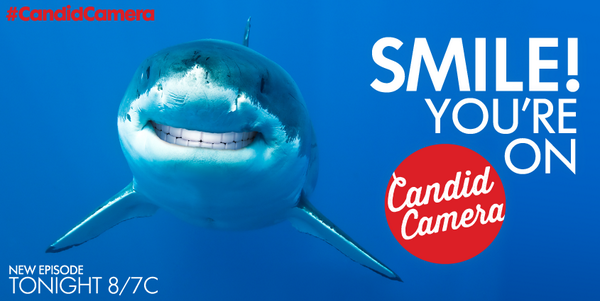 #SharkFact: The shark demo 25-54 is LOVING the all new #CandidCamera so much they can't stop smiling #SharkWeek http://t.co/WCRaXXXGHC