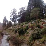 RT @Giga_Alert: Went to the #gigatowndun botanical gardens today. Man what a lovely place http://t.co/3YIYqWvyFn