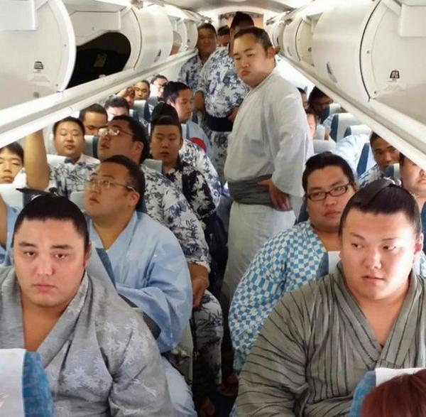"""@NTVWorldNews: ซูโม่ อัดแน่นบนเครื่องบินลำเดียวกัน http://t.co/Fbfo6Vsgj0"" โหดสัสสส"