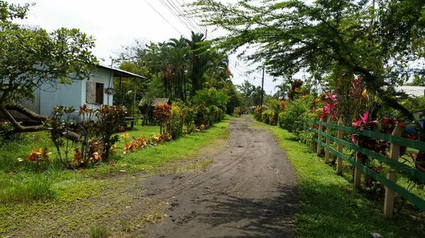 #Parismina #costarica http://t.co/vIjlU2tPss