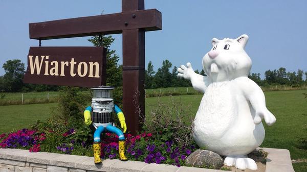 RT @hitchBOT: Jordan and his family took me to meet Wiarton Willie #wiarton #hitchbot http://t.co/bO85EDUH85