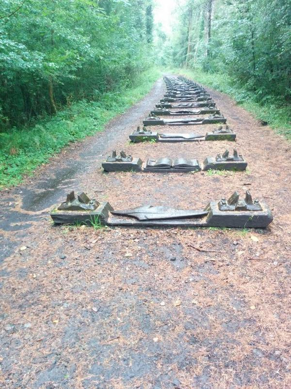 #ForestOfDean railway sleepers, now sculptures. My grandfather took the train to school on these 100 years ago. http://t.co/kybcM3bTDq