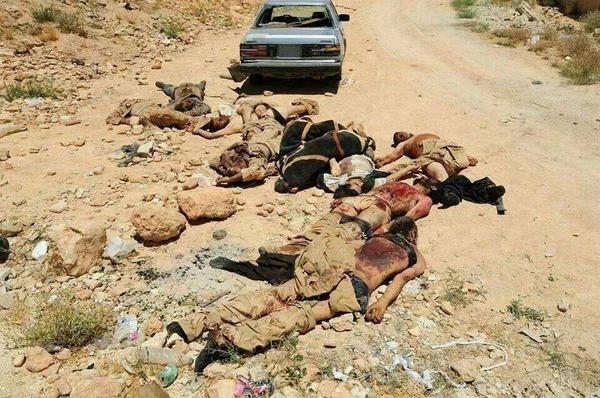 حصرياً من داخل ساحة المعركة جثث الارهابيين الذين قتلوا في المعركة مع الجيش اللبناني #supportlebanesearmy #Lebanon http://t.co/ifkMb3XeHj
