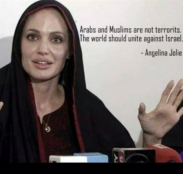 Enough said Angelina Jolie! #FreeGaza #FreePalestine #PrayForGaza #prayforpalestine http://t.co/HJa1M0gs9Q