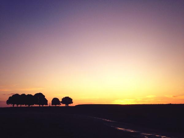 Sunset on the #Somme: a century ago the last sunset of peace. Tonight it's All Quiet save the birdsong. http://t.co/ndLQ9643fp