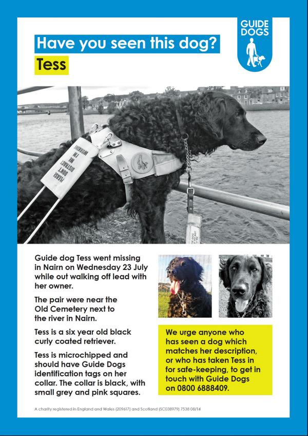 Once again thank you for your amazing support to help us #FindTess Please do keep RT'ing and spreading the word http://t.co/Xp85L2pPtQ