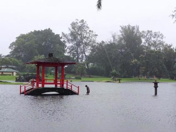 Liliuokalani Gardens in Hilo flooded as #Iselle comes ashore (via @denniskjr): http://t.co/ZdoEa7WSK5 #hiwx