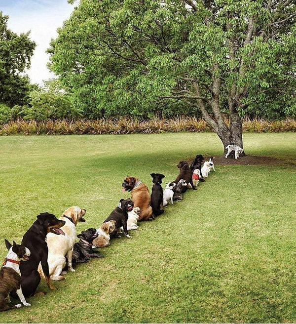 Look what happens when we cut down too many trees: http://t.co/d8imlNFu4J
