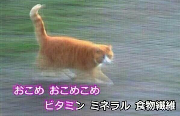 おらよ!!!! http://t.co/6SnFZM0sTD