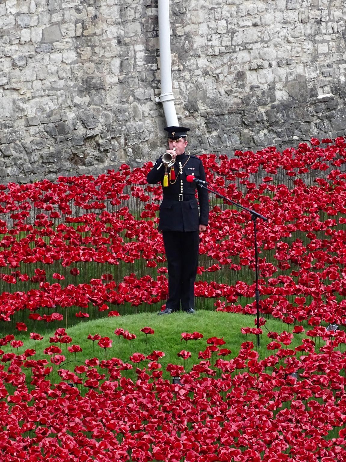 The Bugler playing the Last Post at the Tower of London last night. #WW1 #WW1Centenary http://t.co/WcONMrpK5u