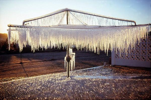 Beauty where you least expect it. via Stanthorpe Border Post. #frost #hillshoist @StanthorpeQLD http://t.co/gfJjkowqEL""