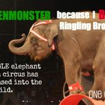 RT @OneGreenPlanet: Join the Campaign to Boycott #RinglingBros http://t.co/gAq6DQsxQC  #IMAGREENMONSTER #BanCircus