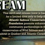 #UpstreamAle / GET IT WHILE YOU CAN! / Now Available in #NewBrunswick & #PEI / #ProtectOutRivers @TheASCF / http://t.co/rGixYrhR2R