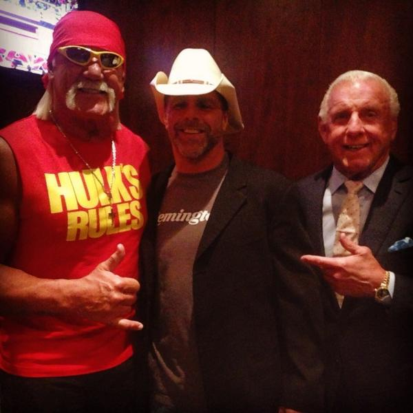 Hulk hogan vs shawn michaels