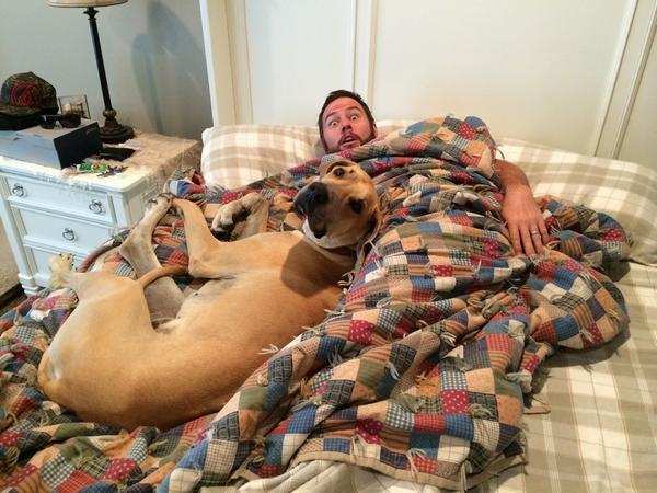 """This """"Power couple"""" stuff is bull crap! I just caught @shaycarl in bed with a blonde! http://t.co/sAWe5O0yTr"""