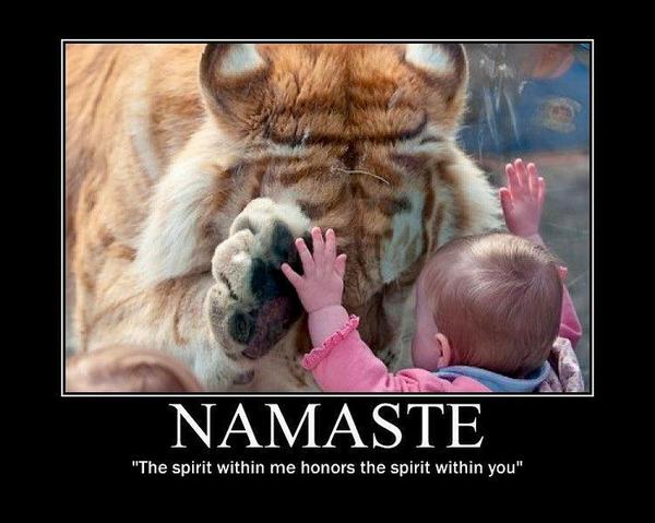 #Namaste! The spirit within me honors the spirit in you. https://t.co/9yMaCPF73i RT @KariJoys RT @AngeLtongue // #SpiritChat