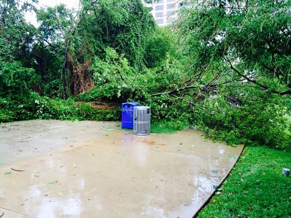 Lots of storm damage on the Katy Trail. Please use caution on the trail. We're working on to clear it ASAP. http://t.co/ZE4A5t8VzY