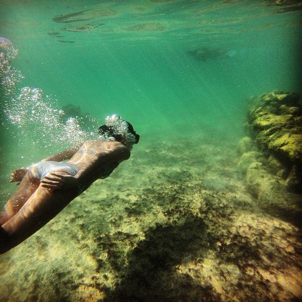 #EnEsteMomentoQuiero sumergirme en las aguas frescas de Xel-Há. http://t.co/t8YMuPUrNU
