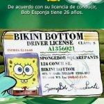 RT @sabiastuque_: Sabias que según su licencia de conducir Bob Esponja tiene 26 años http://t.co/8KHYp5Tadk