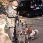 広島の実家が土砂崩れにあいました。犬を連れて出ることができず、放してしまいました。見つけられた方はどうぞ私までメールください。  subetenoikimono@yahoo.co.jp 写真手前の犬です。奥の犬はみつかりました http://t.co/fvdJMML6aU