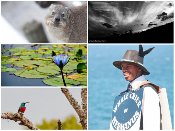 A1: Simply, there's no limit on what you see, from wildlife to mountains to big skies to people. #discoverOverberg http://t.co/8m3rUcxeEl