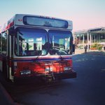 Fun fact for your morning commute: 28% of us get to campus by bus! #uvic #uvicat8 #uvicpix http://t.co/REsfbsLU1L