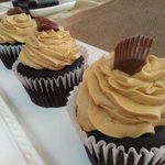 Happy Hump Day Charlotte!! Let our cupcakes get you over the hump today! #cupcakes http://t.co/ekrcCaNrOn