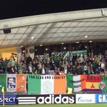 RT @awaydays_: Celtic fans at Maribor tonight. #CFC http://t.co/sB1DMP0nut