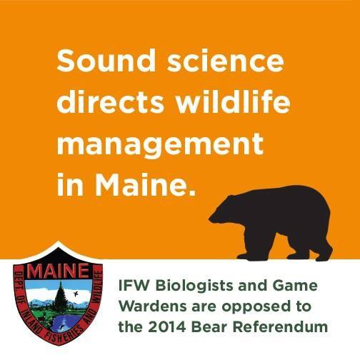 Sound science directs wildlife management in Maine. #thebearfacts http://t.co/AXNNWHHpIG