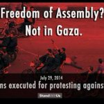 20 gazan executed for protesting against Hamas ★#MyJihad Muslims Yazidis Teesta Setalvad #IsraelUnderAttack Islam http://t.co/W4PLCZ9H92