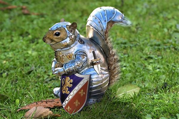 Squirrel Justice Warrior. http://t.co/g18NByq0Q9