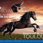 A nouveau le #cheval sera Roi à #Toulouse, avec le #SalonduCheval les 29,30 et 31 août !! @VisitezToulouse @Toulouse http://t.co/B19Vm49Xq0