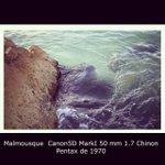 #Marseille #marseille #malmousque #mywork #art #5d #canon #chinon #1.7 #mer #sea #exhibi... http://t.co/xVxvdnEJ3m http://t.co/FySANJkyf4
