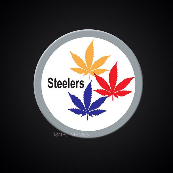 Lmfao RT @NFL_Memes: LEAKED: Pittsburgh Steelers unveil their new logo for the 2014-15 season. http://t.co/lLukfGsjm6