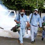 #Nicaragua detecta a dos más con chikungunya http://t.co/auajpKfcsf http://t.co/u7heXlVAMJ