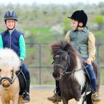RT @OriginalGiving: Three One-Hour Horse Riding Lessons at Lee Hill Riding School in #Huddersfield for £30. http://t.co/PVyKhUjbih http://t.co/Hu4f7G81YN