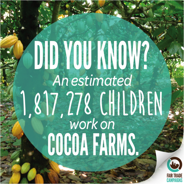 More #FairChocolate means less child labor. Join our friends @FTCampaigns to raise awareness: http://t.co/9eyeWJGCJG http://t.co/cgWohOK1XC