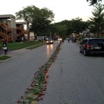A line of roses lines the street where Michael Brown was shot. #Ferguson http://t.co/ngLDWhNPvT