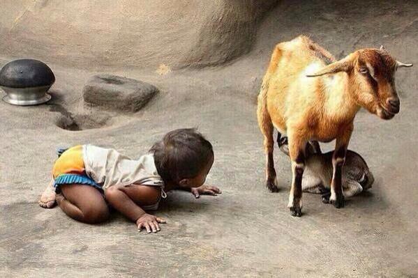Leren begint bij waarnemen... #onderwijs http://t.co/CSIcrKGk6V