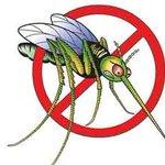 Роспотребнадзор нашел в Jack Daniel`s вещество для уничтожения насекомых http://t.co/QY94lo33b9 http://t.co/vustAHLIl5