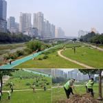 RT @seongnamcity: 오늘 시·구청,사업소 직원들이 폭우로 범람했던 탄천 정화활동에 나섰어요. 쓰러진 고사목도 치우고, 산책로와 자전거도로에 쌓인 쓰레기도 싹싹~ 땀은 나도 맘은 시원하네요! 쾌적해진 탄천에서 즐거운 주말 보내세요! http://t.co/sSDwnrziwm