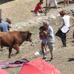 RT @heraldoes: VÍDEO: Susto en las fiestas de Frías de Albarracín. http://t.co/6Zviuo3Klh #Heraldo #Teruel http://t.co/QGhmBvZhwS