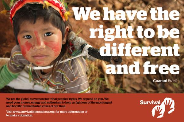 Please support the Guarani's right to their ancestral land: http://t.co/H9VrUWCM8w http://t.co/VcyO5nJdDq