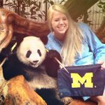 RT @umich: MengDa and @andiepandaa send us a #GoBlue from the Giant Panda Breeding & Rescue Center in Chengdu, China! #mgoabroad http://t.co/w8r3bvQziD