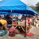 Los vendedores desalojados están siendo reubicados en la calle 39 con primera. http://t.co/TzlAnwLLFj
