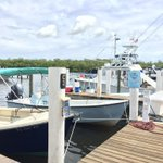 RT @PortSanibel: We are the proud home to Southern Instinct Charters! #PortSanibel #Sanibel #FortMyers #Fishing #Florida http://t.co/zyncMRVgb6