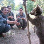Kurdish female fighters and a bear cub,  because thats what your Friday needs, that, and bourbon http://t.co/SKtOVY62fm
