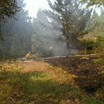 RT @npescod: On scene at trail fire in the South end of #Nanaimo. Located just south of the Northbound lane of Nanaimo Parkway. http://t.co/RYhlj0lEjw