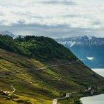 RT @24heuresch: La Suisse serait le pays où lon vit le mieux #OCDE http://t.co/cicN04UW0c http://t.co/8WDNp9XIPz